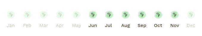 sezon conopida