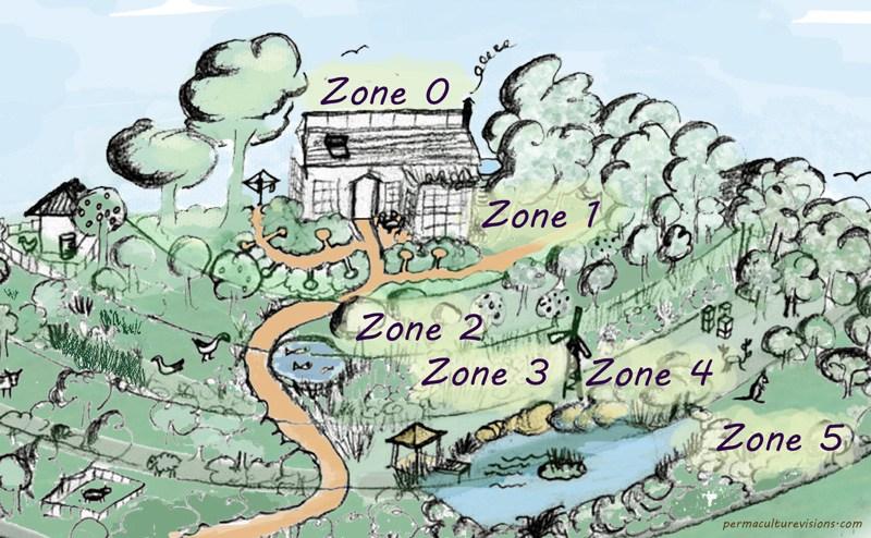 planificare zone culturi asociate